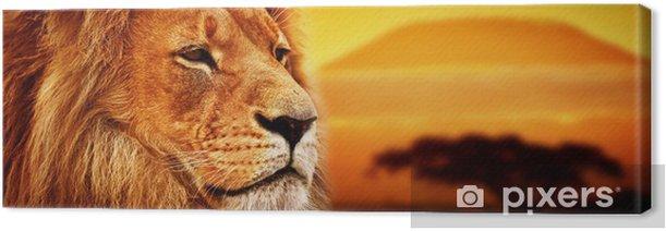 Obraz na płótnie Portret lwa na sawannie. Kilimandżaro o zachodzie słońca. safari -