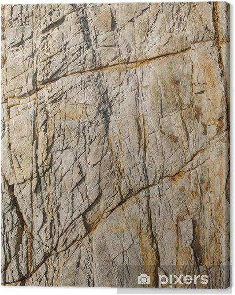Obraz na płótnie Powierzchnia brązowego kamienia - Cuda natury