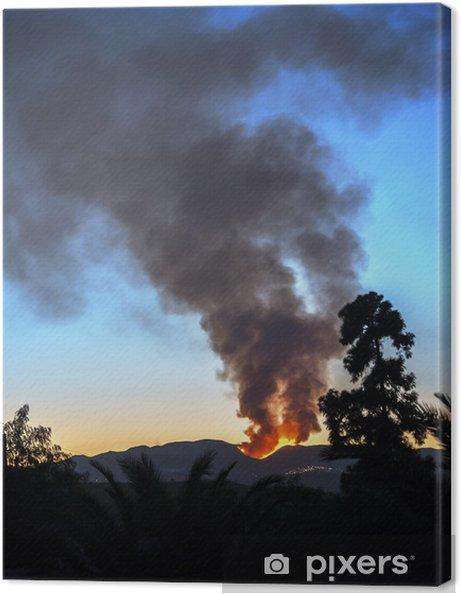 Obraz na płótnie Pożar lasu w pobliżu Bedar, Mojácar, Almeria, Andaluzja, Hiszpania - Europa