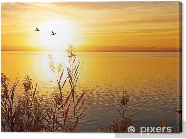 Obraz na płótnie Pozostawiając na słońcu - Tematy