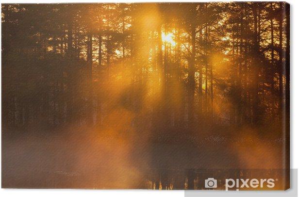 Obraz na płótnie Promienie słońca świecące przez mgłę - Niebo