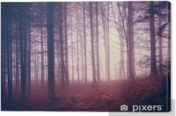 Obraz na płótnie Przerażające rocznika las kolor - Tematy