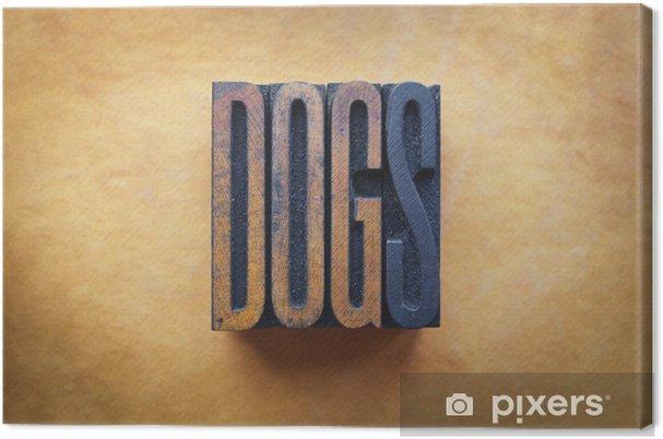 Obraz na płótnie Psy - Ssaki