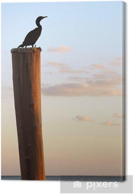 Obraz na płótnie Ptak na słupie - Ameryka