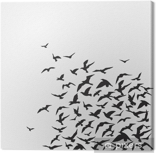Obraz na płótnie Ptaki w tle - Tematy