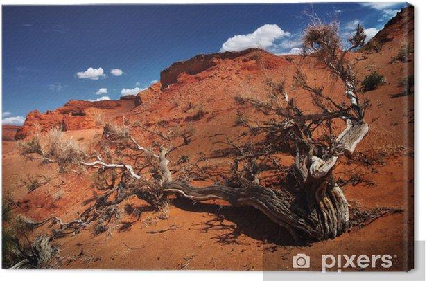 Obraz na płótnie Pustynia Gobi drzewo - Cuda natury