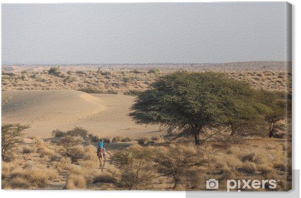 Obraz na płótnie Pustynny krajobraz, zielone drzewa suche krzew singiel wielbłąda z masztem - Azja
