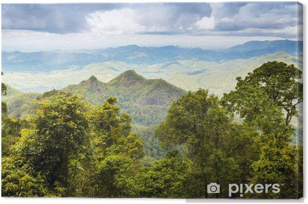Obraz na płótnie Queensland Rainforest - Tematy