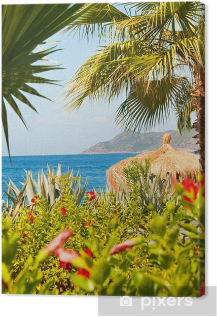 Obraz na płótnie Raj indyka: morze, palmy, egzotyczne kwiaty - Wakacje