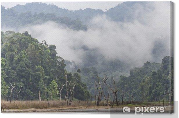 Obraz na płótnie Rano mgły i drzew martwych w gęstych tropikalnych, Perak, Malezja - Krajobrazy