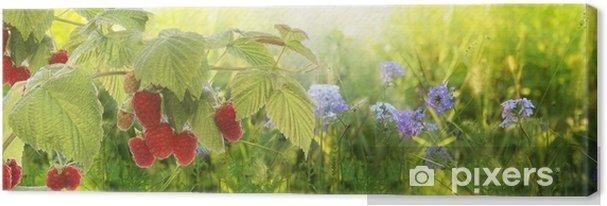 Obraz na płótnie Raspberry.garden malin w sunset.soft naciskiem - Maliny