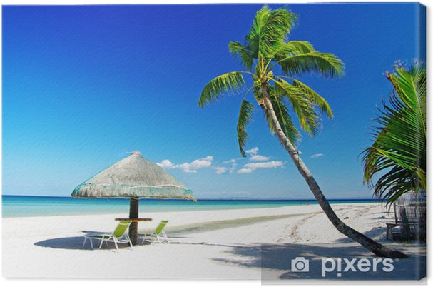 Obraz na płótnie Relaks tropikalnej scenerii - Palmy