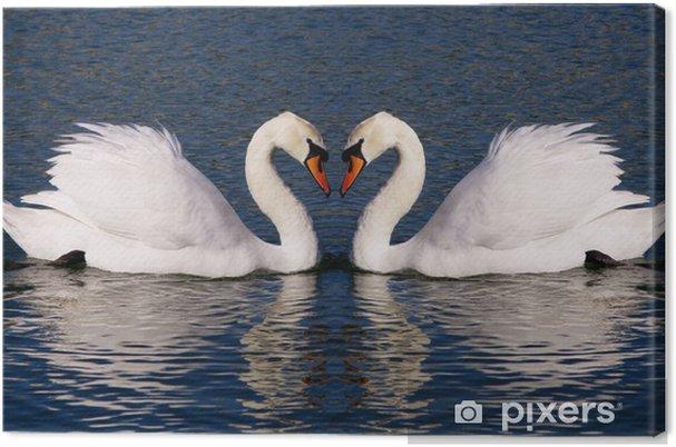 Obraz na płótnie Retro zdjęcie łabędzie serca symbol wiecznej miłości - Łabędzie