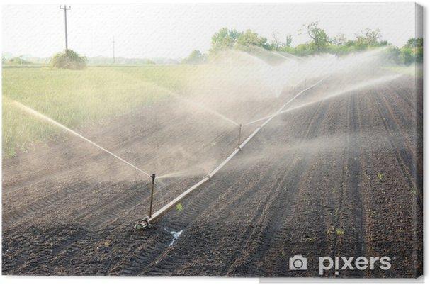 Obraz na płótnie Rolnicza nawadnianie - Rolnictwo