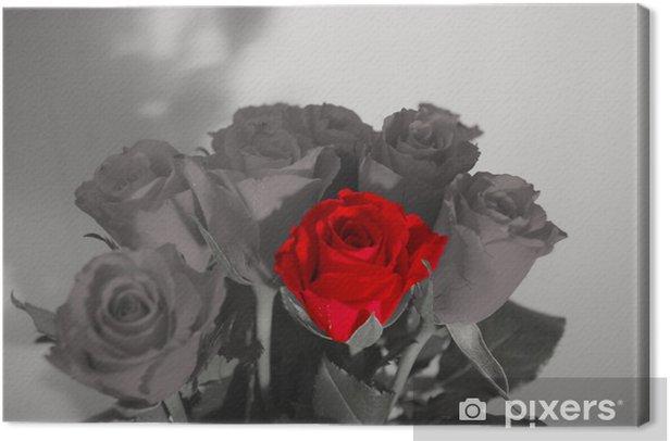 Obraz na płótnie Rose - Kwiaty