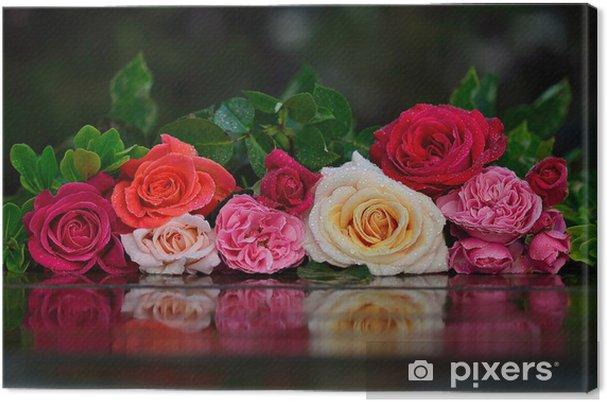 Obraz na płótnie Róże z kropli wody - Tła