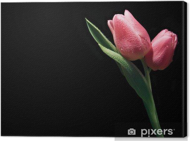 Obraz na płótnie Różowe tulipany - Świętowanie