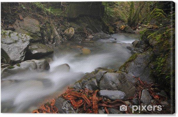 Obraz na płótnie Ruch płynu - Woda