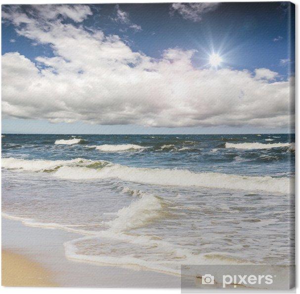 Obraz na płótnie Rugia: szorstki, piękne wybrzeże Bałtyku :) - Niemcy