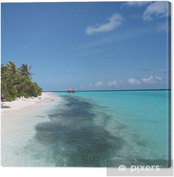 Obraz na płótnie Ryba na plaży Angaga - Angaga plaża w Ławica - Wakacje