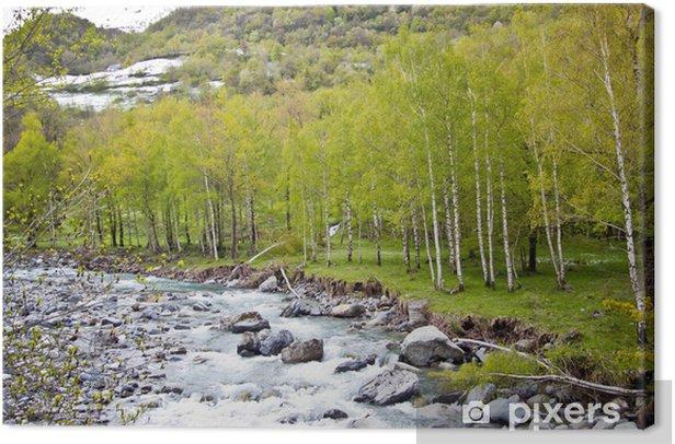 Obraz na płótnie Rzeka górskich w wczesną wiosną - Ekologia