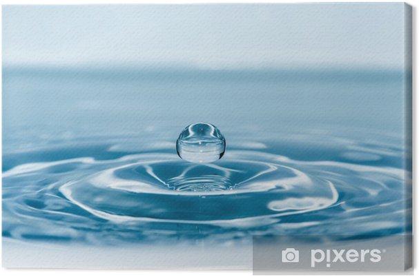 Obraz na płótnie Rzuć się w wodzie - Cuda natury