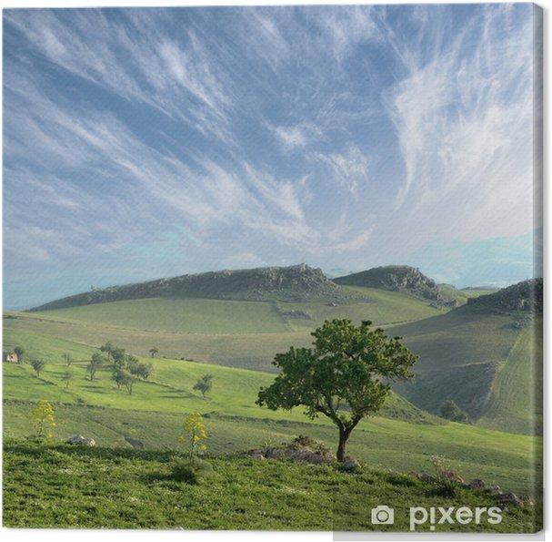 Obraz na płótnie Samotne Drzewo I Chmura - Europa