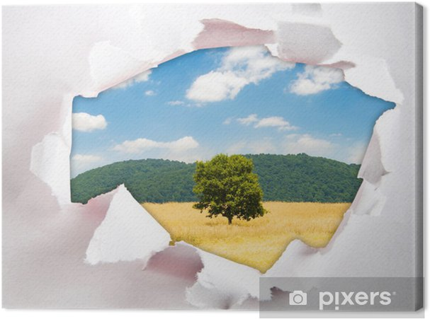 Obraz na płótnie Samotne drzewo przez otwór w papierze - Rolnictwo
