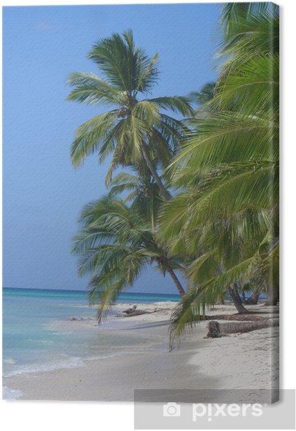 Obraz na płótnie Saona Island - Dominikana - Woda