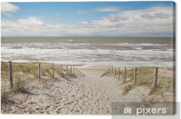 Obraz na płótnie Ścieżka piasek plaży w słoneczny dzień - Woda