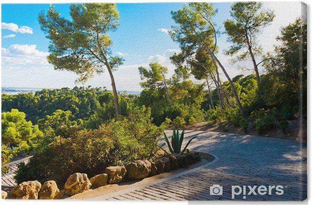Obraz na płótnie Ścieżka w Guell parc zaprojektowany, Barcelona, Hiszpania. - Tematy