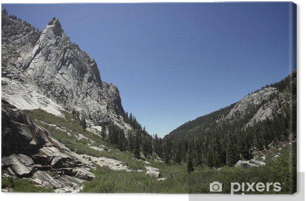 Obraz na płótnie Sequoia National Park, California - Ameryka