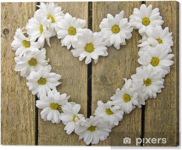 Obraz na płótnie Serdeczne pozdrowienia kwiaty: białe stokrotki na drewno - Szczęście