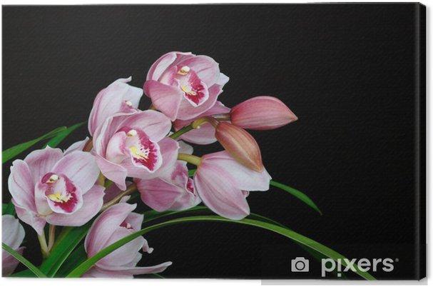 Obraz na płótnie Shinpijumu - Kwiaty
