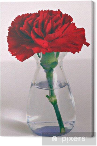 Obraz na płótnie Single Red Carnation - Kwiaty