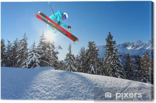 Obraz na płótnie Ski freestyle - Narciarstwo