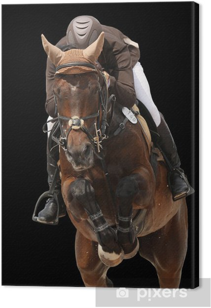 Obraz na płótnie Skoki konia samodzielnie na czarny - Sporty indywidualne
