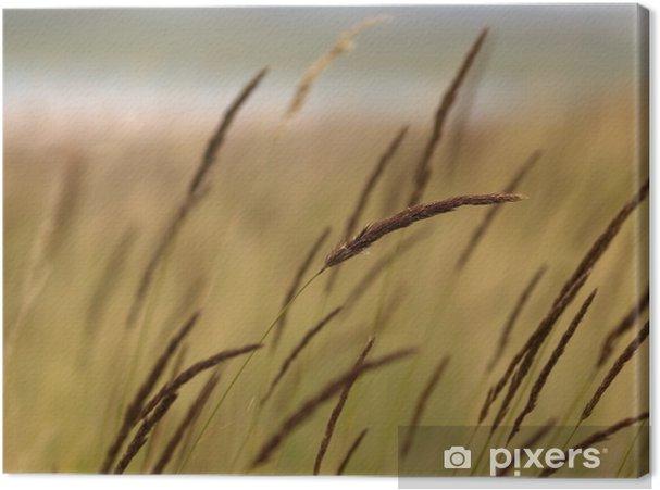 Obraz na płótnie Skoki w jeziorze - Rośliny