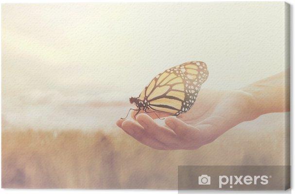 Obraz na płótnie Słodkie spotkanie między ludzką ręką a motylem - Uczucia i emocje