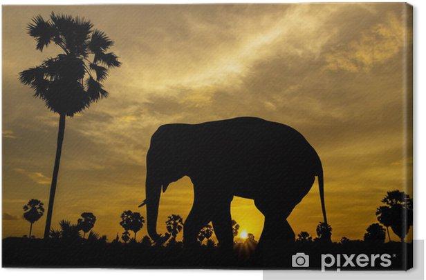 Obraz na płótnie Słoń i palmy na zachód słońca - Ssaki