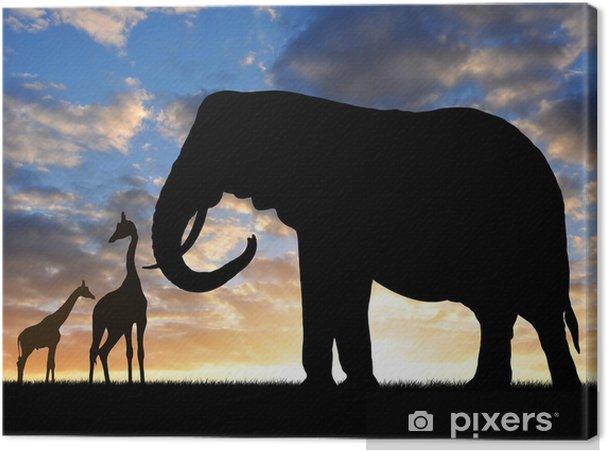 Obraz na płótnie Słoń Silhouette z żyrafy w zachodzie słońca - Tematy
