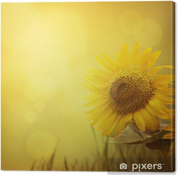 Obraz na płótnie Słonecznik tło - Tematy