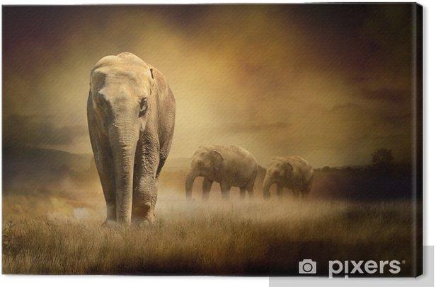 Obraz na płótnie Słonie na zachodzie słońca -