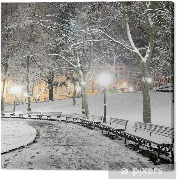 Obraz na płótnie Śnieg na drzewach w parku nocą w Rydze - Europa