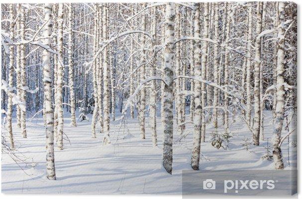 Obraz na płótnie Snowy pni brzozy - Style