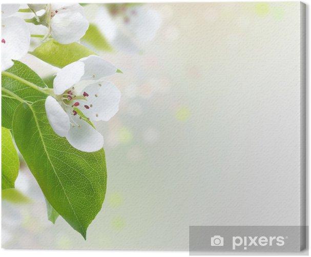 Obraz na płótnie Spring Blossom border - Dom i ogród