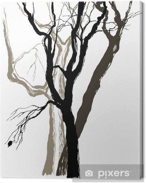 Obraz na płótnie Stare drzewa rysunek graficzny szkic - Naklejki na ścianę
