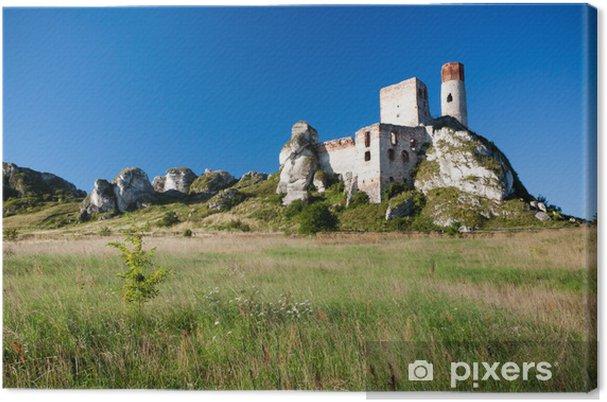 Obraz na płótnie Stare ruiny zamku w pobliżu Częstochowy - Europa