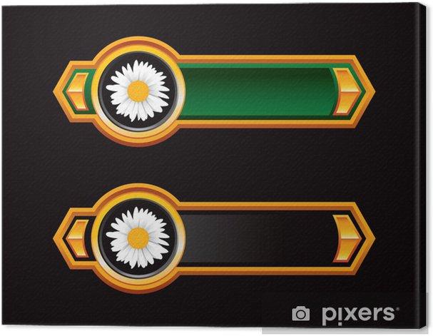 Obraz na płótnie Stokrotka kwiaty zielone i czarne strzałki - Kwiaty