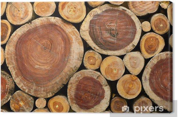 Obraz na płótnie Stos drewnianych kłód - Tematy